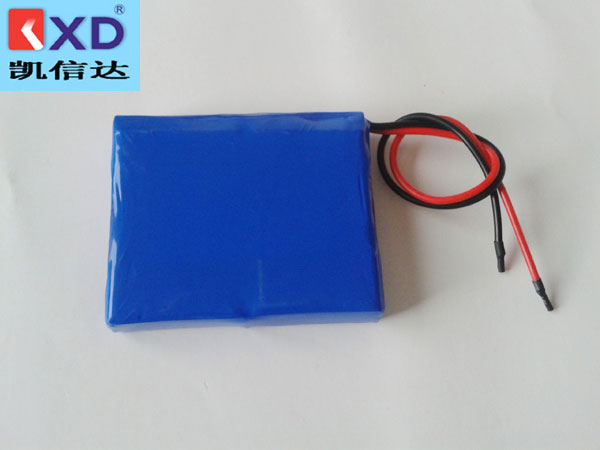 7.4V4000MAH聚合物锂电池